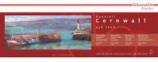Hahnemuhle Cornwall Panoramic Matt Watercolour Paper 20 x 50cm (10 Sheets)
