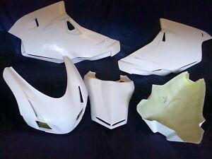 Rennverkleidung mit Höcker Ducati 749-999 03-06 Fairing Racekuip