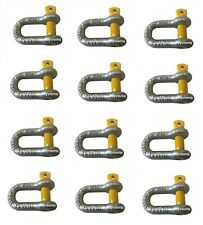 12 X D Dee Shackle 8mm Rated WLL 750kg S Grade Hayman Trailer Towing Yellow Pin
