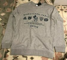 H16 Sweat Logo 2 Parks Icons Grey/ Parks Icons Grey M Disneyland Paris