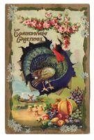 ca1910 Embossed Thanksgiving Greetings Postcard Turkey Roses Pumpkin Colorful