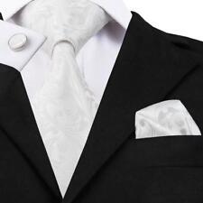Hi Tie pure white Paisleys Men's Necktie Sets Neckwear 100% Silk Jacquard C-1163