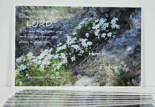"10 Large Sunday School Postcards  5.5 X 8.5 ""Photo from Yellowstone"","