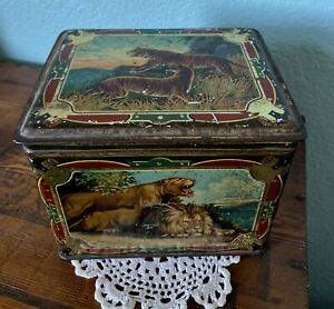 Antique Biscuit Tobacco TIN  TIGERS, LIONS, BEAR, ELEPHANT, BUFFALO