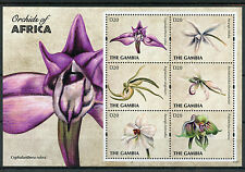 Gambia 2011 estampillada sin montar o nunca montada Orquídeas de África 6v M/S II Flores Flora sellos