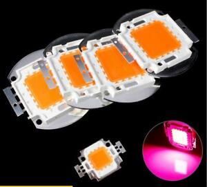 10 pcs DC12V 10W 20W 30W 50W 400-840NM Full Spectrum LED light for plant grow