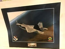 F3D WING F/A-22 RAPTOR 422D TEST EVAL SQ K by Price Randel  RARE VINTAGE POSTER