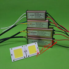 REAL WATT chip-on-board HIGH POWER 20W 30W 50W 220V 110V Lampada a LED lampada Chip integrato