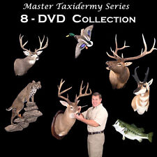 Learn Taxidermy  -8 DVD Home School Course.