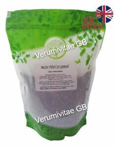 Milk Thistle Seeds 1000g / 1kg Detox 100% Natural Silybum Marianum
