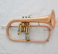 2018 Professional Rose Brass Flugelhorn Bb Horn Monel Valves Abalone Key W/Case