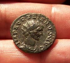 Aurelianus pour Aurélien