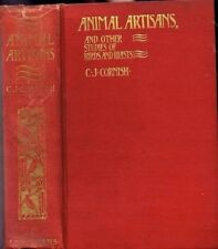 Animal Artisans and Other Studies of Birds and Beasts  antique book