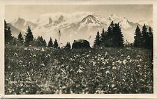 Carte Flore Alpine et Massif du MONT BLANC Sommets enneigés