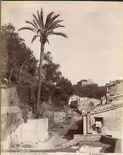 Noack. Italie, Riviera di Levante, Portofino, La Palma  Vintage albumen print.