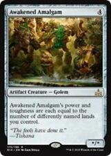 MTG - Awakened Amalgam Rivals of Ixalan Rare LP/NM x1 Magic FAST FREE SHIPPING