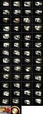 8 mm Film Horror USA Teenage Werewolf 1950.Jahre.Ken Films.-Antique 8mm Films