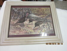 great wild turkey hunting picture Mint