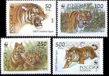 Russia Russian Federation 1993, Sc# 6178-6181 MNH, siberian tiger complete serie