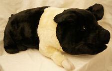 "PIG HUG Hampshire pig plush toy 26"" ditz therapeutic soft animal New hog DITZ"