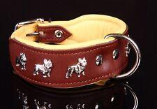 Leder-Halsband Französische Bulldogge, braun-natur, 50cm x 40mm, french bulldog
