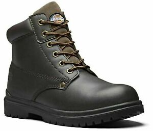 NEW DICKIES ANTRIM SAFETY STEEL TOE  WORK BOOTS BROWN SIZE  6 ,7,8,9,10,11,12