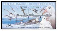bat ca 2004 antarctic antarctique oiseaux bird aves vogel petrel geant macronect