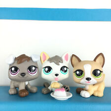 Authentic 3 Littlest Pet Shop Lot 1876 1877 1878 Dog Baby Puppy / LPS Petriplets