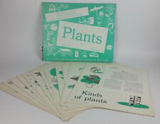 VTG 1960's Poster Set 12 Instructor Primary Science Concept Charts Plants