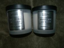 HAVEN STREET CANDLE COCONUT MILK & VANILLA 2 WICK SOY WAX WHITE x 2