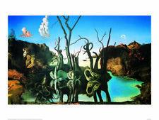Swans Reflecting Elephants - Salvador Dalí - Fine Art Giclee Print (30 x 40)