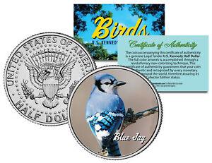 BLUE JAY BIRD JFK Kennedy Half Dollar US Colorized Coin