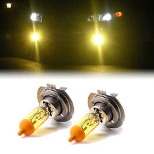 YELLOW XENON H7 100W BULBS TO FIT Fiat Punto MODELS