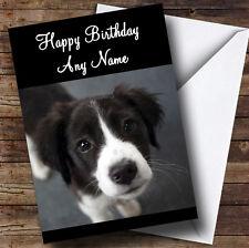 Border COLLIE PUPPY CANE personalizzato compleanno auguri carta