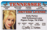 Dolly Parton DOLLYWOOD. Pigeon Forge TN . plastic ID card Drivers License -