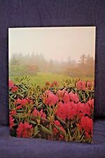 Vintage MEAD Field Of Pink Flowers Portfolio School Folder School 3-Ring