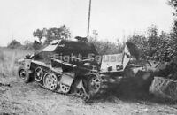 WW2 Picture Photo France 1944 wrecked German SdKfz 251 victim USAAF fire 2832
