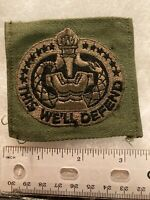 Authentic US Army Drill Sergeant Identification Badge BDU OD Green Patch
