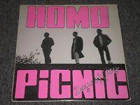 Homo Picnic~Days of Grey~1986 Hardcore~Lyrics Insert~Plus Records 002~FAST SHIP