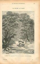 La Biche au bois par Gustave Courbet France GRAVURE ANTIQUE OLD PRINT 1901