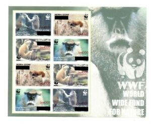 SPECIAL LOT WWF Sierra Leone 2008 2910 - Patas Monkey SRCG - Sheet of 8 - IMP
