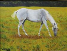 THE HORSE ON FLOWES STORE ROAD, OIL ON CANVAS PAINTING- with WOOD FRAME