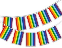 Gay Pride Rainbow Rectangular Flags Coloured Bunting Banner Month Pride