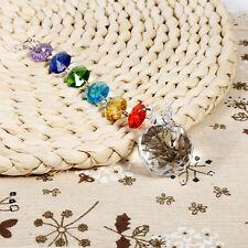 Rainbow Crystal Glass Chandelier Light Ball Prisms Suncatcher Drop Pendant NEW