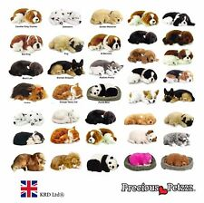 Black Friday Deal Deprecious Petzzz Perfect Pets Cat Dog Kids Toy Christmas Gift