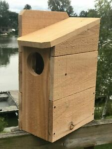 """Squirrel House Nesting Box 3/4"""" Solid Cedar Owl 3 Different Sizes TOP SELLER!!!!"""