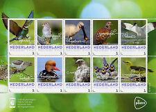 Netherlands 2017 MNH Summer Birds 10v M/S Ducks Pigeons Bee-Eaters Stamps