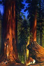 Handmade Oil Painting repro Gilbert Munger - Redwood Forest Giant-Sequoias
