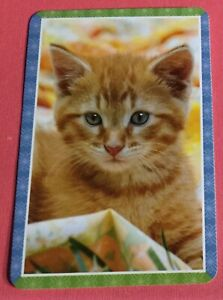 Vintage swap cardl/playing card tabby cat kitten