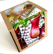 Carnivorous Plant Growing Kit - Venus fly trap,drosera,sarracenia,nepenthes